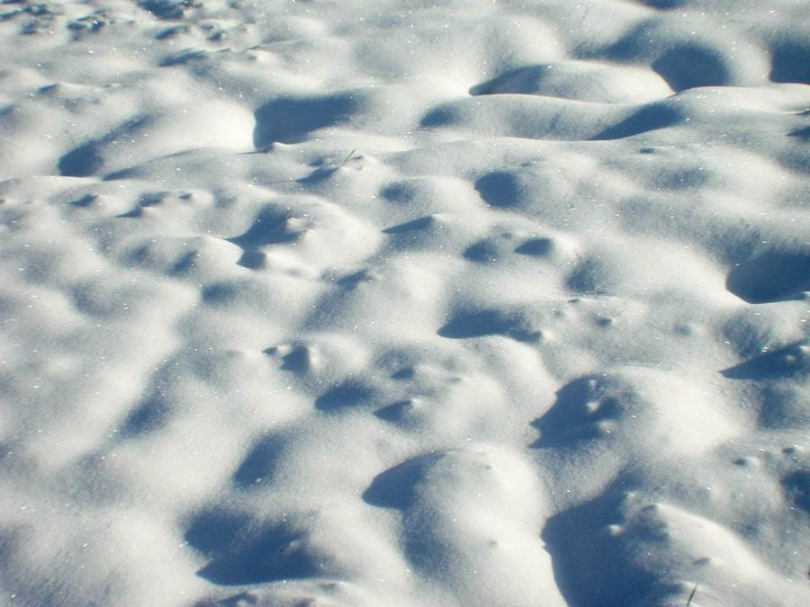 Background_white_snow